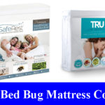 Best Bed Bug Proof Mattress Covers Reviews (Updated) 2020