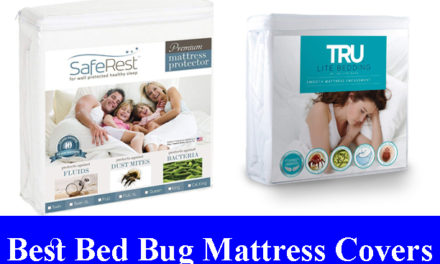 Best Bed Bug Proof Mattress Covers Reviews 2021