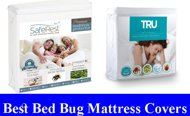 Best Bed Bug Mattress Covers Reviews (Updated)