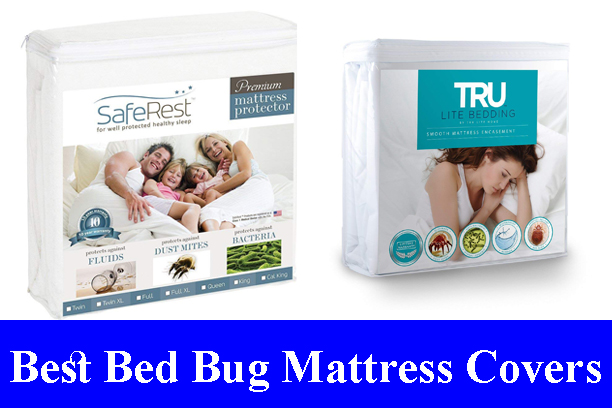 Best Bed Bug Mattress Covers Reviews (Updated) 2020