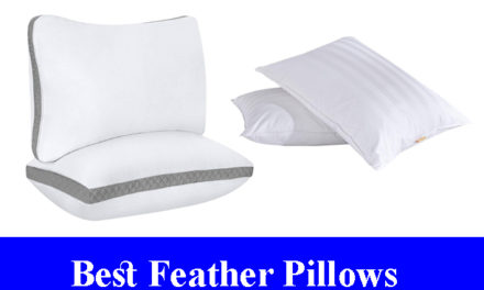 Best Feather Pillows Reviews (Updated) 2020