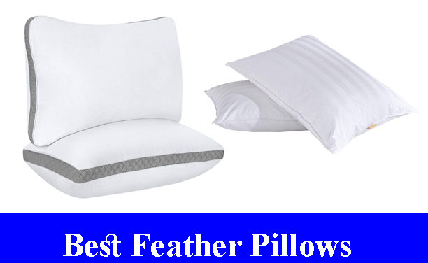 Best Feather Pillows Reviews (Updated)