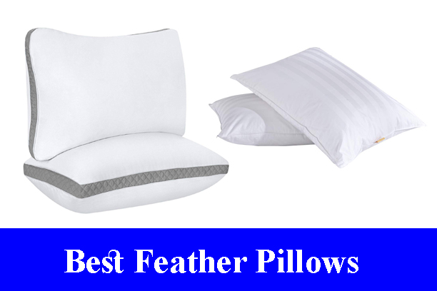Best Feather Pillows Reviews 2021