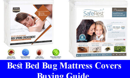 Best Bed Bug Mattress Covers Buying Guide Reviews (Updated) 2020