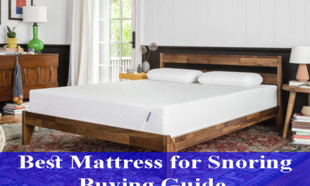 Best Mattress for Snoring Buying Guide Reviews 2021