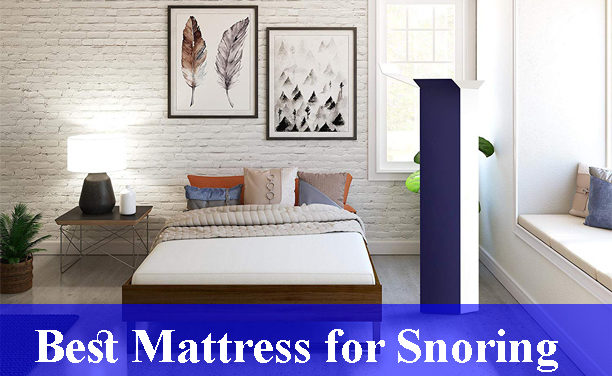 Best Mattress for Snoring Reviews (Updated)