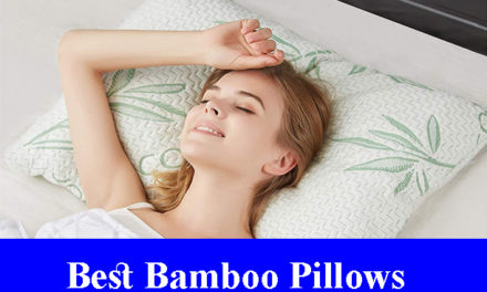 Best Bamboo Pillows Reviews (Updated) 2020