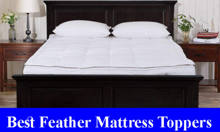 Best Feather Mattress Toppers Reviews 2020