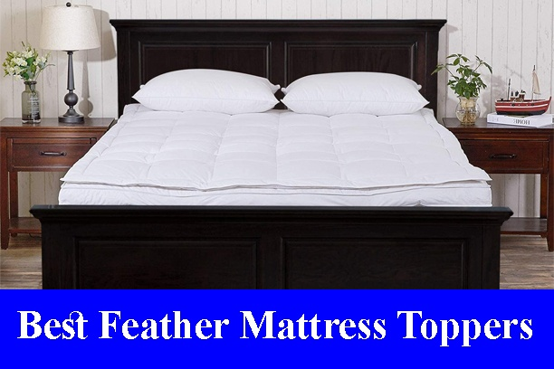 Best Feather Mattress Toppers Reviews 2021