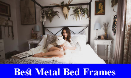 Best Metal Bed Frames Reviews 2020